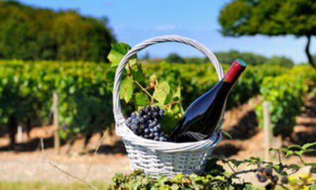 my-brussels-village-wine